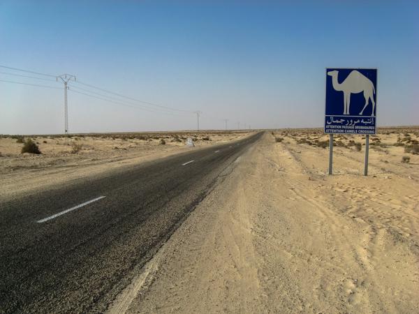 Chott el Jerid Tunisia