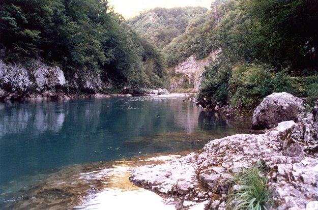 fiume tara-rid
