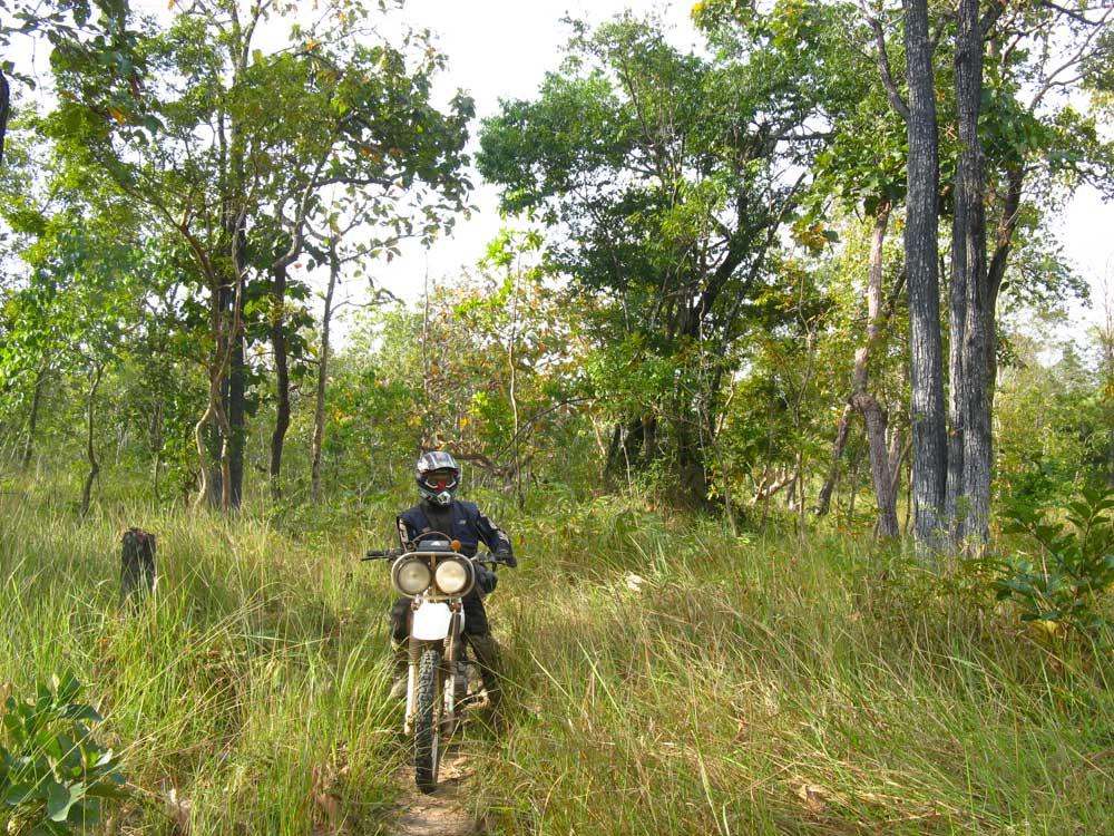 da Katrie a Ban Lung nel Ratanakiri