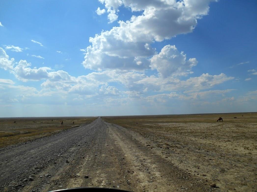 in moto verso il lago di Aral