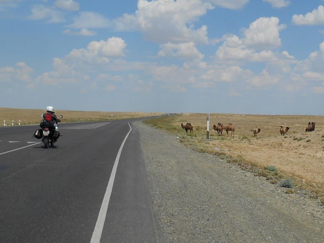 la-strada-per-quattro-chiacchiere-con-2-motociclisti-russi-e-proseguiamo-nel-deserto-fino-ad-aralsk
