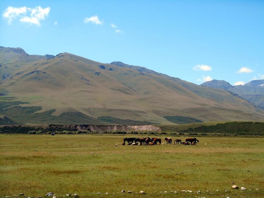 verso-il-kazakhstan-4