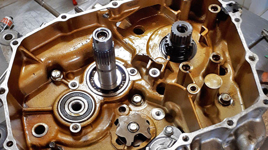 guida passo passo allo smontaggio di un motore Africa Twin